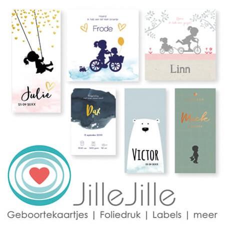 Bekijk alle geboortekaartjes van Jille Jille