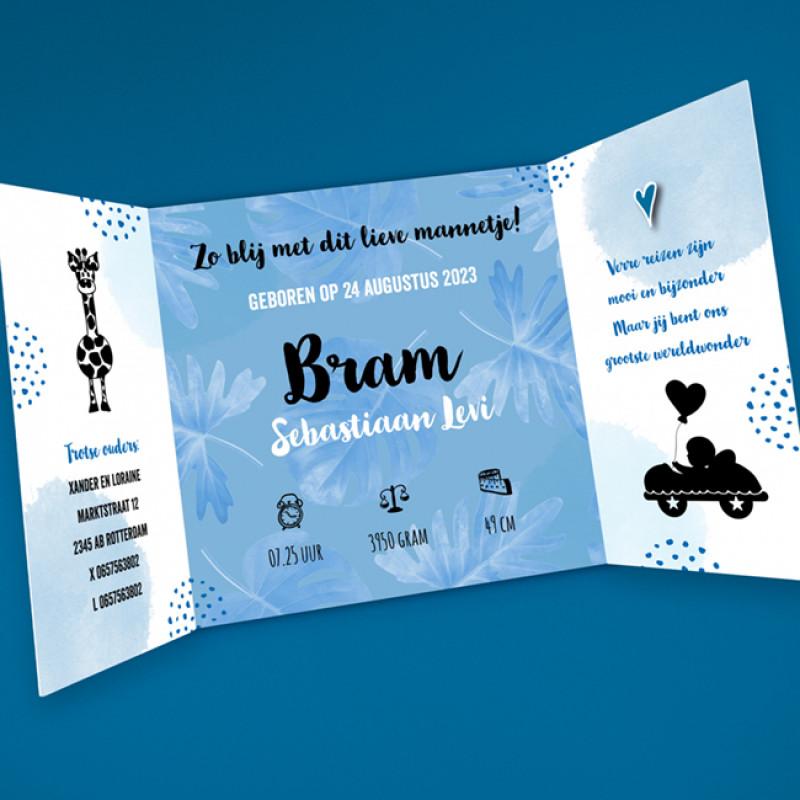 Geboortekaartje Blauwe Giraf