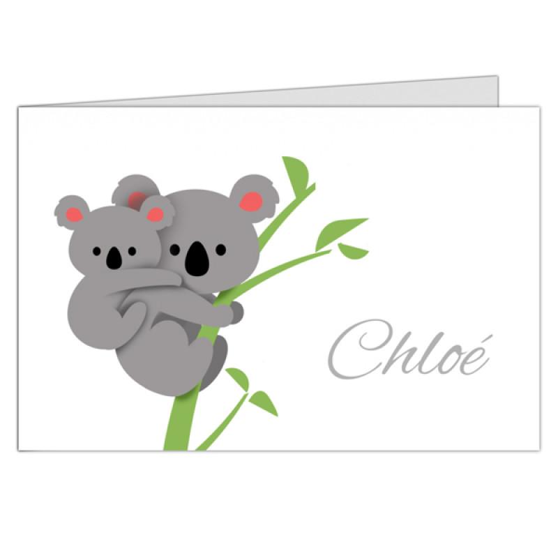 Geboortekaartje twee koala's