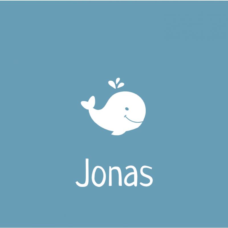Geboortekaartje walvis jongen simpel