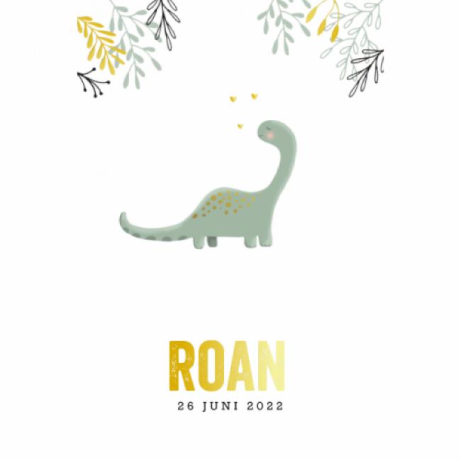 Geboortekaartje Dino jongen folie