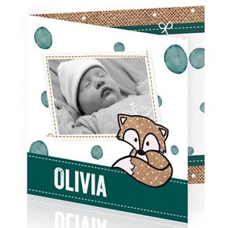 Geboortekaartje Foto en vosje