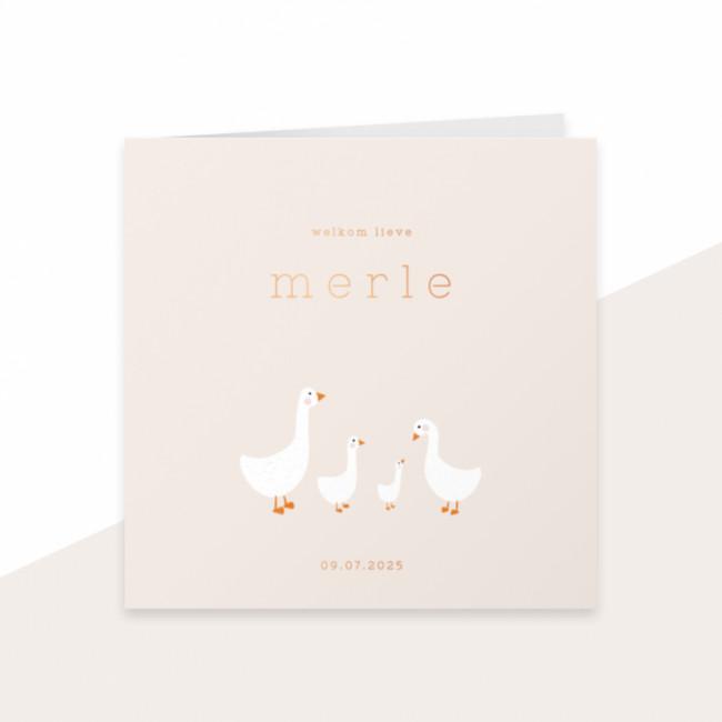 Geboortekaartje ganzenfamilie - folie