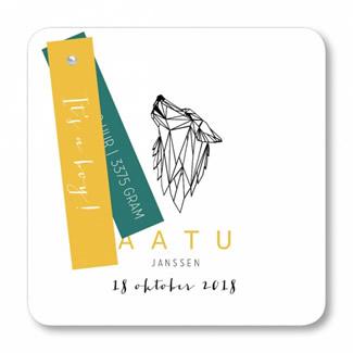 Geboortekaartje Geboortekaart - Aatu