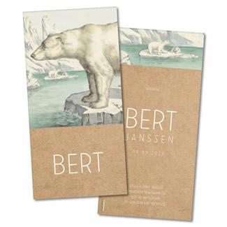 Geboortekaartje Geboortekaart - Bert