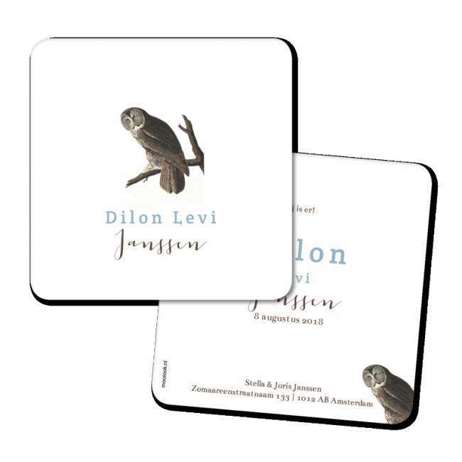 Geboortekaartje Geboortekaart - Dillon