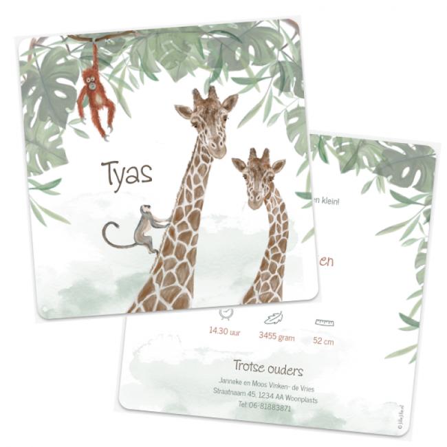 Geboortekaartje Geboortekaart giraf aapjes