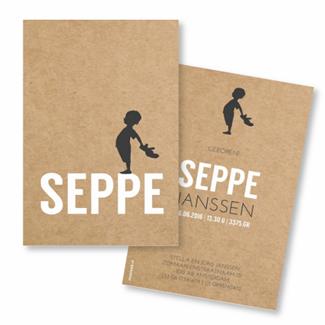 Geboortekaartje geboortekaart - Seppe