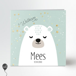 Geboortekaartje geboortekaartje beer mint