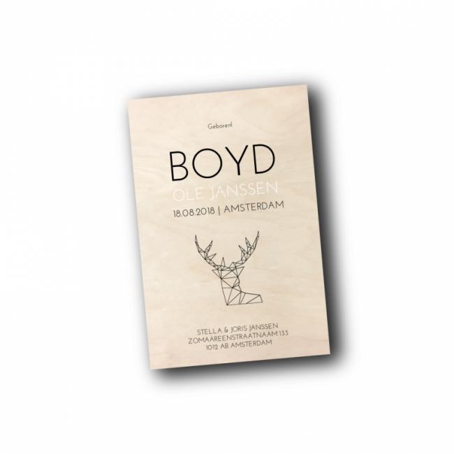 Geboortekaartje geboortekaartje - Boyd