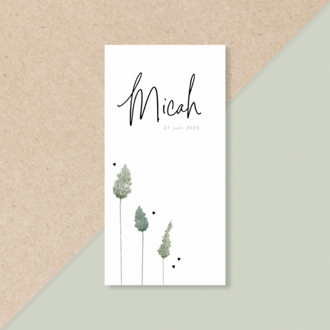 Geboortekaartje Groene droogbloemen