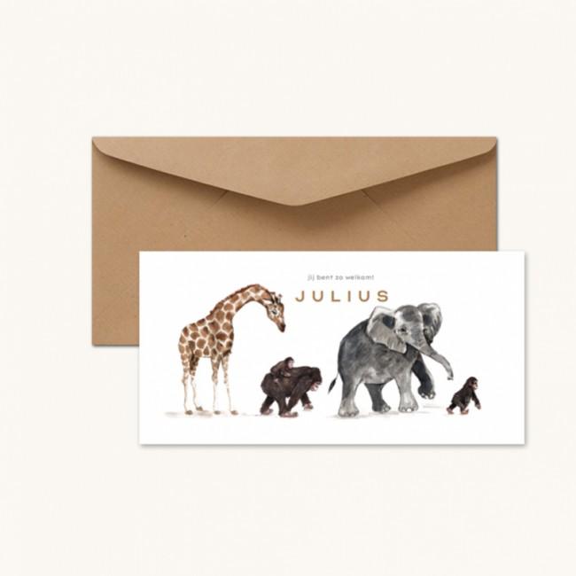 Geboortekaartje Jungle dieren op een rij