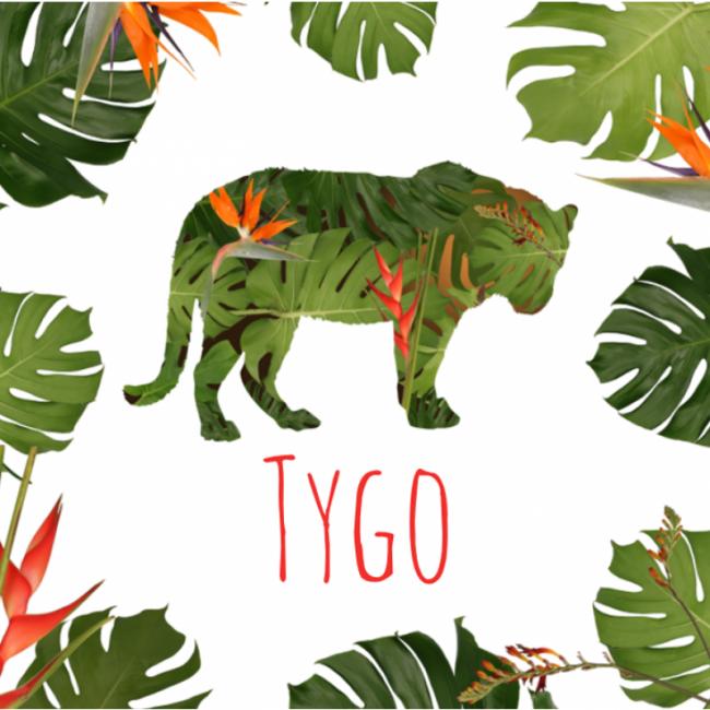 Geboortekaartje Jungle tijger
