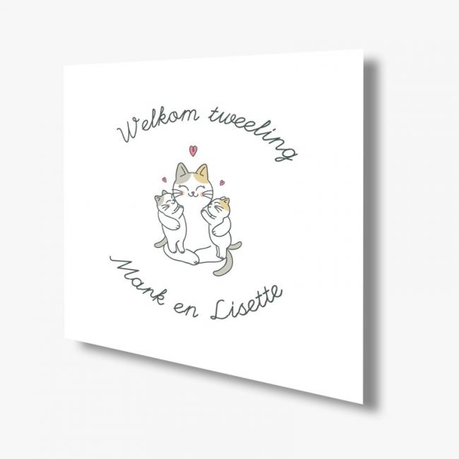 Geboortekaartje Kaart tweeling kittens
