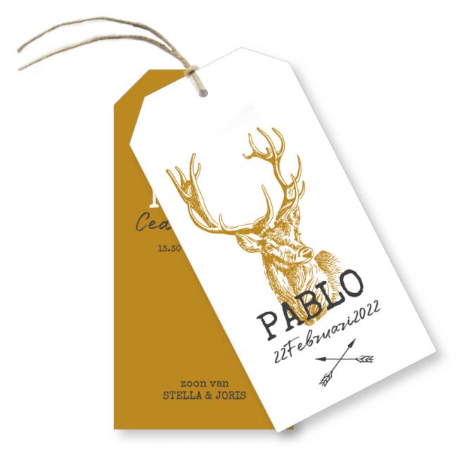 Geboortekaartje label geboortekaart Pablo