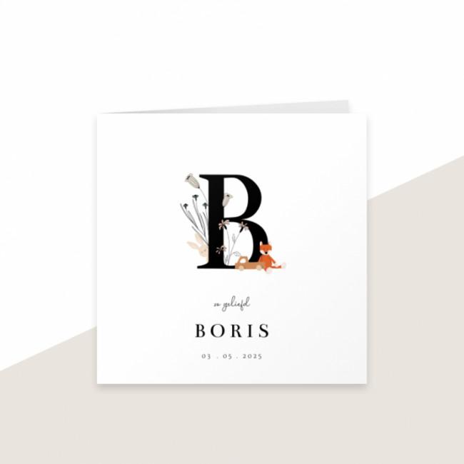 Geboortekaartje Letter B