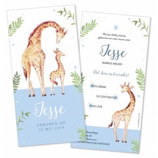 Geboortekaartje Lieve giraffen