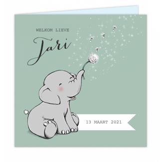 Geboortekaartje Olifant Geboortekaartje