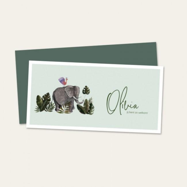 Geboortekaartje Olifant mintgroen