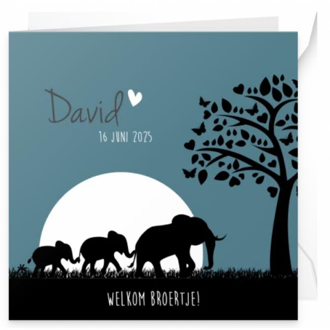 Geboortekaartje Olifanten familie