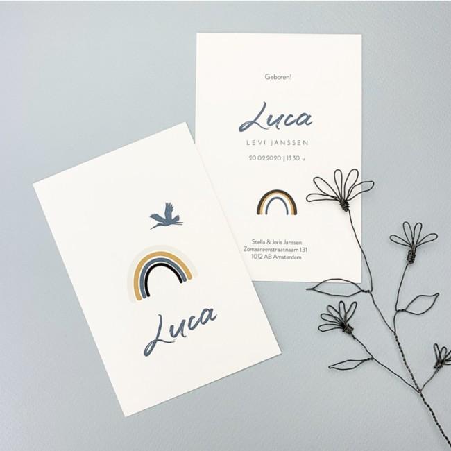Geboortekaartje Regenboog Luca