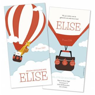 Geboortekaartje Rode luchtballon en dieren