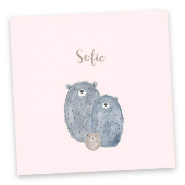 Geboortekaartje Sofie