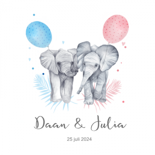 Geboortekaartje Tweeling olifantjes