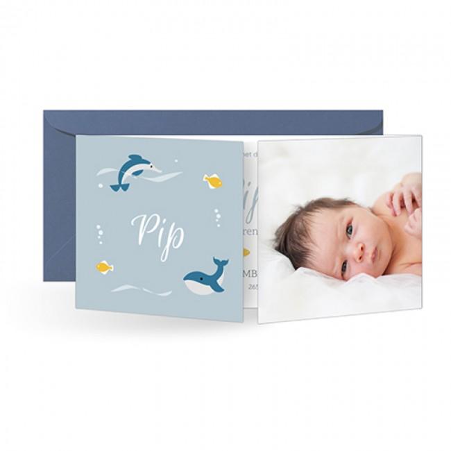 Geboortekaartje tweeluik foto en vissen