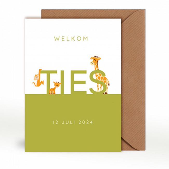 Geboortekaartje typografie giraffen